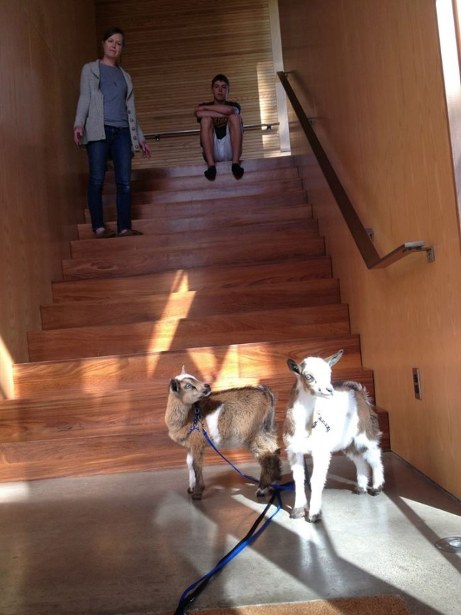 Kristin Ford (with son and goats) in the house she designed